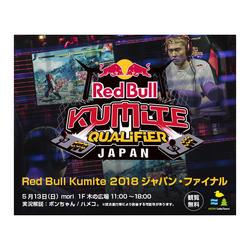 Red Bull Kumite(レッドブル・クミテ)