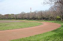 都立大泉中央公園