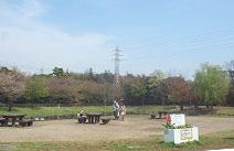 練馬区立大泉さくら運動公園
