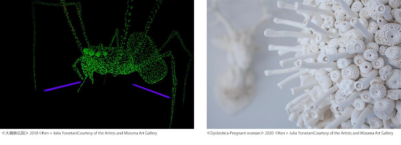 《大蜘蛛伝説》2018年《Dysbiotica》2020年